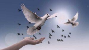 İç Huzuru Yakalamak için Yapılacak En Önemli Şey