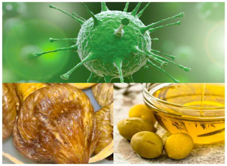 Koronavirüse İyi Gelen Besinler Nelerdir?
