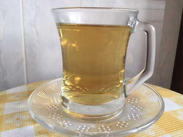 Ekinezya Çayının Faydaları Bağışıklık Sistemine Etkileri