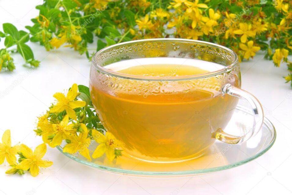 Kantaron Çayı Neye İyi Gelir Nasıl Tüketilir?