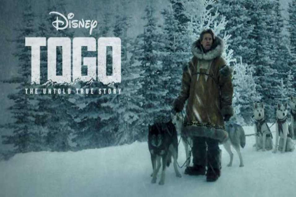 Togo Film 2019 Yüreğe Dokunan Gerçek Bir Hikaye